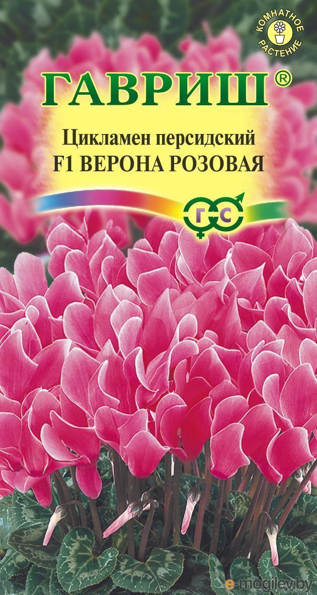 Заказать цветы почтой, теплица самые оптимальные
