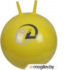 Мячи Мяч Z-Sports BB-004-45 Yellow