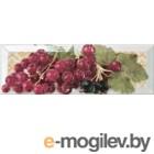 Monopole Tutti Frutti Ribes (300x100)