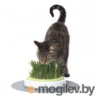Dr.Hvostoff Трава для проращивания Зеленая нива(с грунтом) для котов, грызунов и птиц 20гр. кор